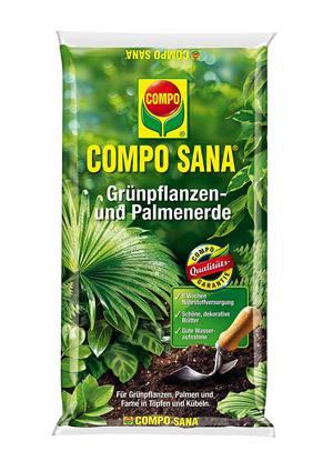 Welche erde für palmen
